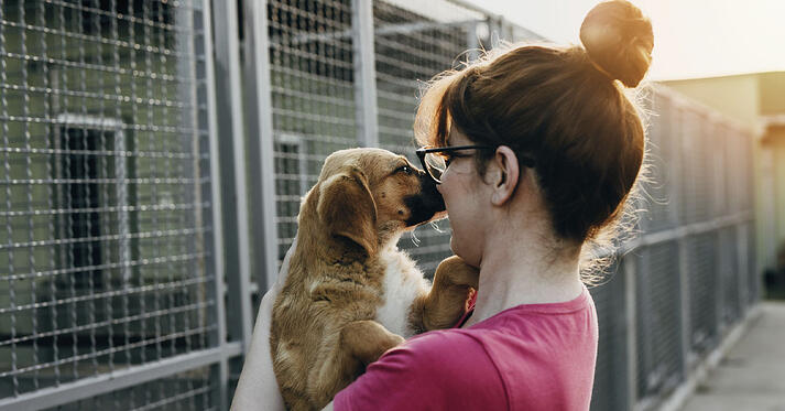 Woman with dog at animal shelter
